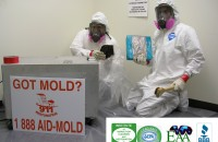 mold remediation Irvine